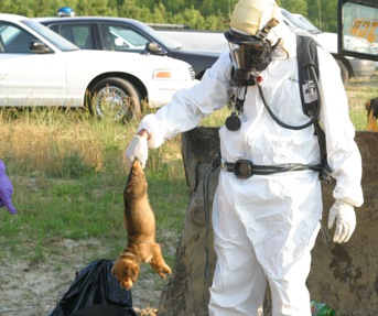 Ahoski police departmetn Det. Sght jerremy roberts holds a dead dog retrieved from a dumpster, in Ahoski, NC, wastewater treatment plant. Wednesday, June 15, 2005. (AP Photo/Roanoke-Chowan News-Herald, Cal Bryant)