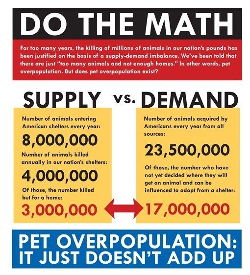 a pet overpopulation survey nathan j winograd the information