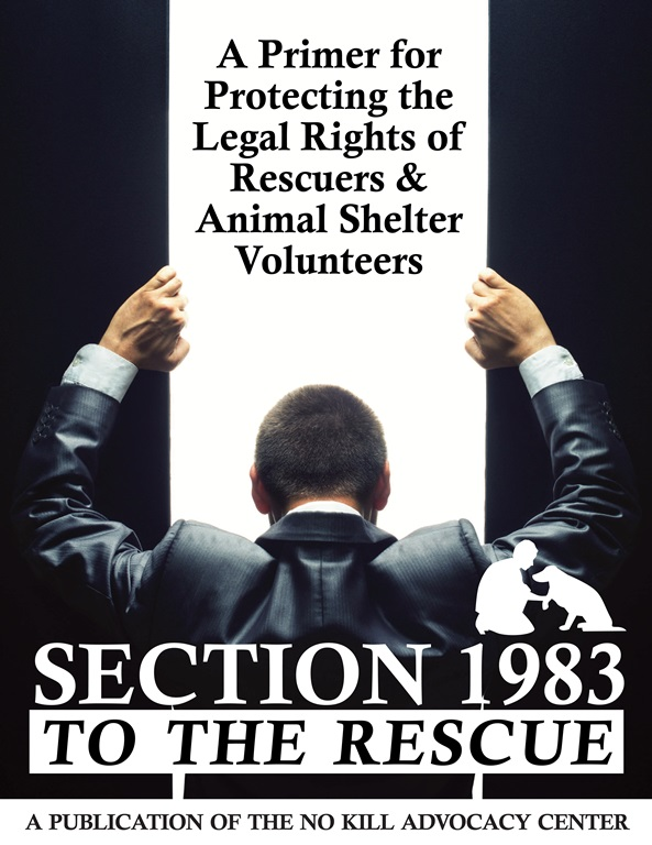 Section 1983 to the Rescue_Layout 1 1_0001