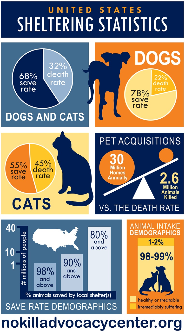 quick facts us sheltering statistics_Layout 1_0001